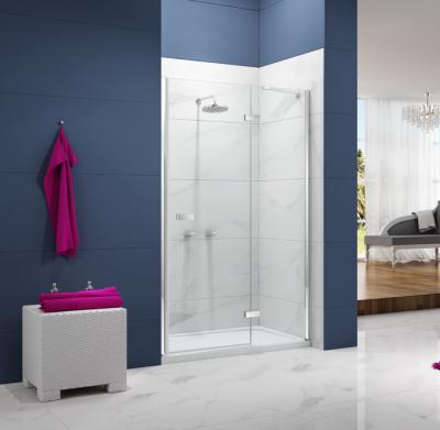 1200mm Hinged Shower Door