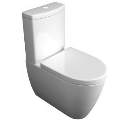 Toilets Ergonomic Designs