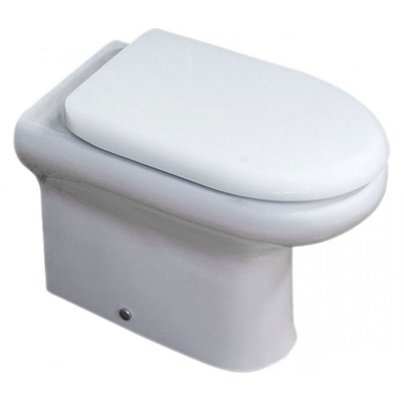 Terrific Rak Compact Back To Wall Toilet And Soft Close Seat Unemploymentrelief Wooden Chair Designs For Living Room Unemploymentrelieforg
